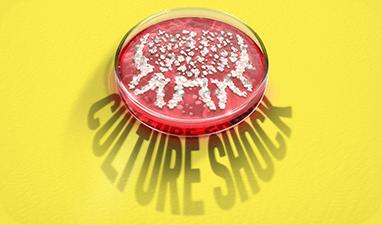 culture shock text on petri dish